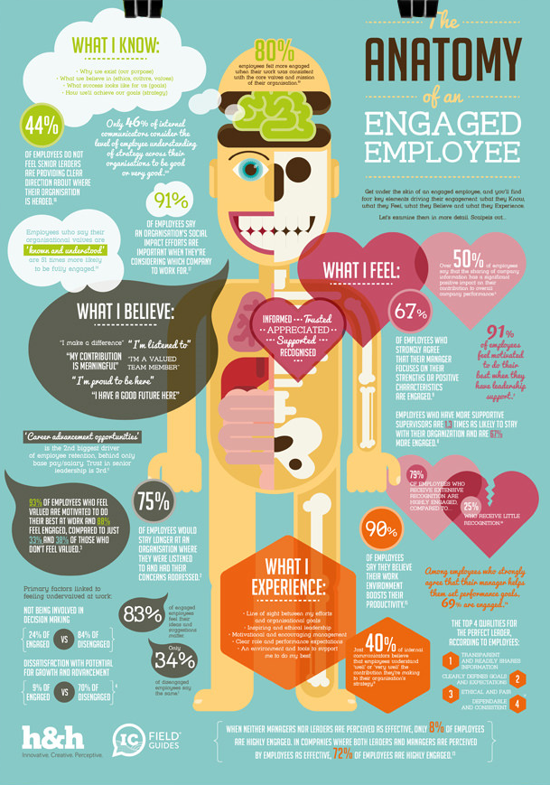 The Anatomy of an Engaged Employee Employee Engagement IC Field Guide infographic by H&H